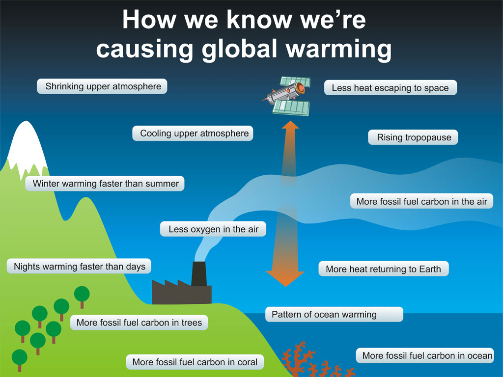 Buy an essay global warming causes and effects