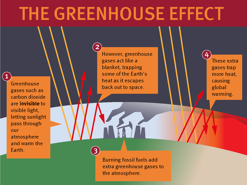 Greenhouse Effect Poster