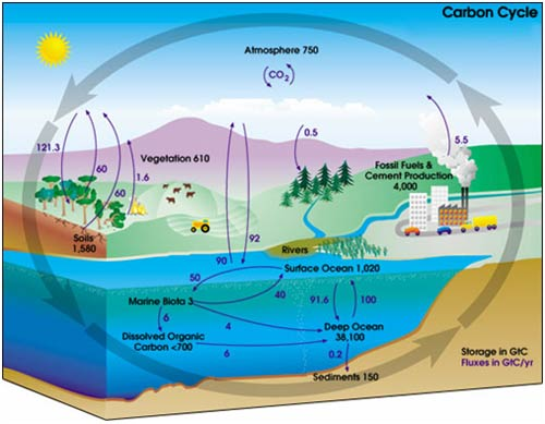Co2 Emissions Change Our Atmosphere For Centuries