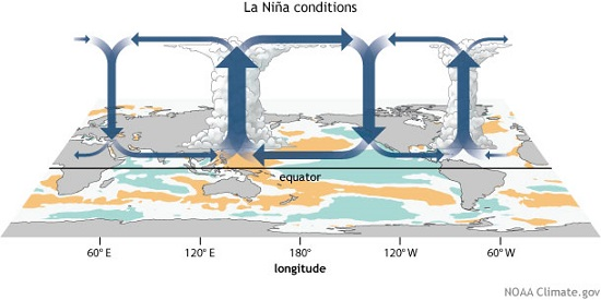 Walker Circulation in LaNina Conditions