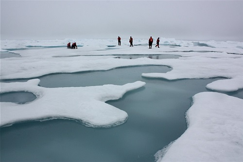 Arctic sea ice and melt ponds in the Chukchi Sea