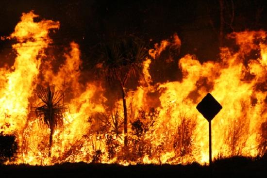 Australia Bushfire - Shutterstock