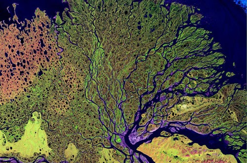 Aerial photo of Lena River delta
