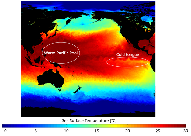 A large pool of warm water in western Pacific