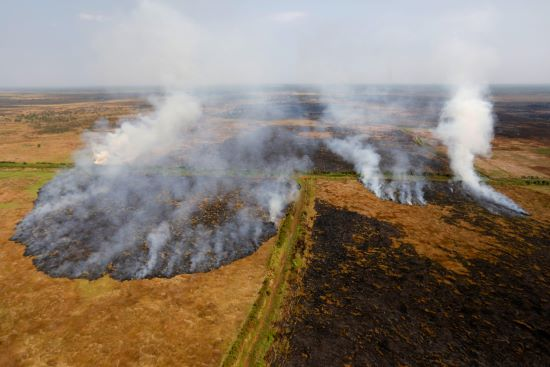 Smoke rises from a peatland during fires near Banjarmasin Indonesia