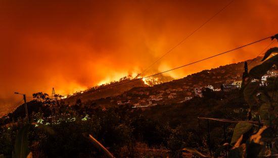 Wildfire CA