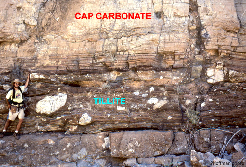 Cap-carbonate overlying tillite, Namibia