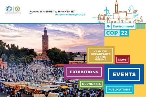 COP 22 Banner