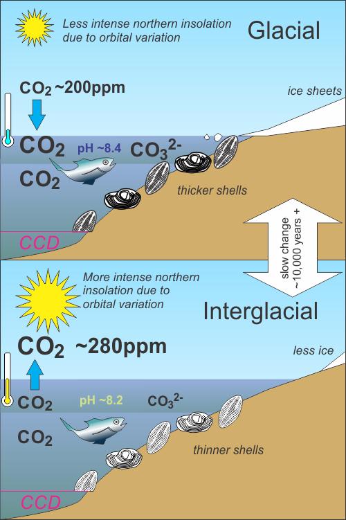 Glacial-Interglacial ocean chemistry