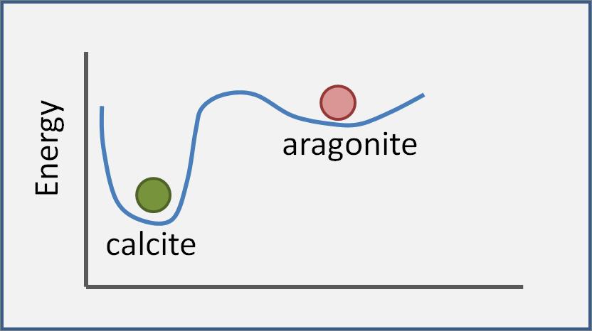 Polymorph stability