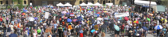 4000 people crowd King George Square to support climate action