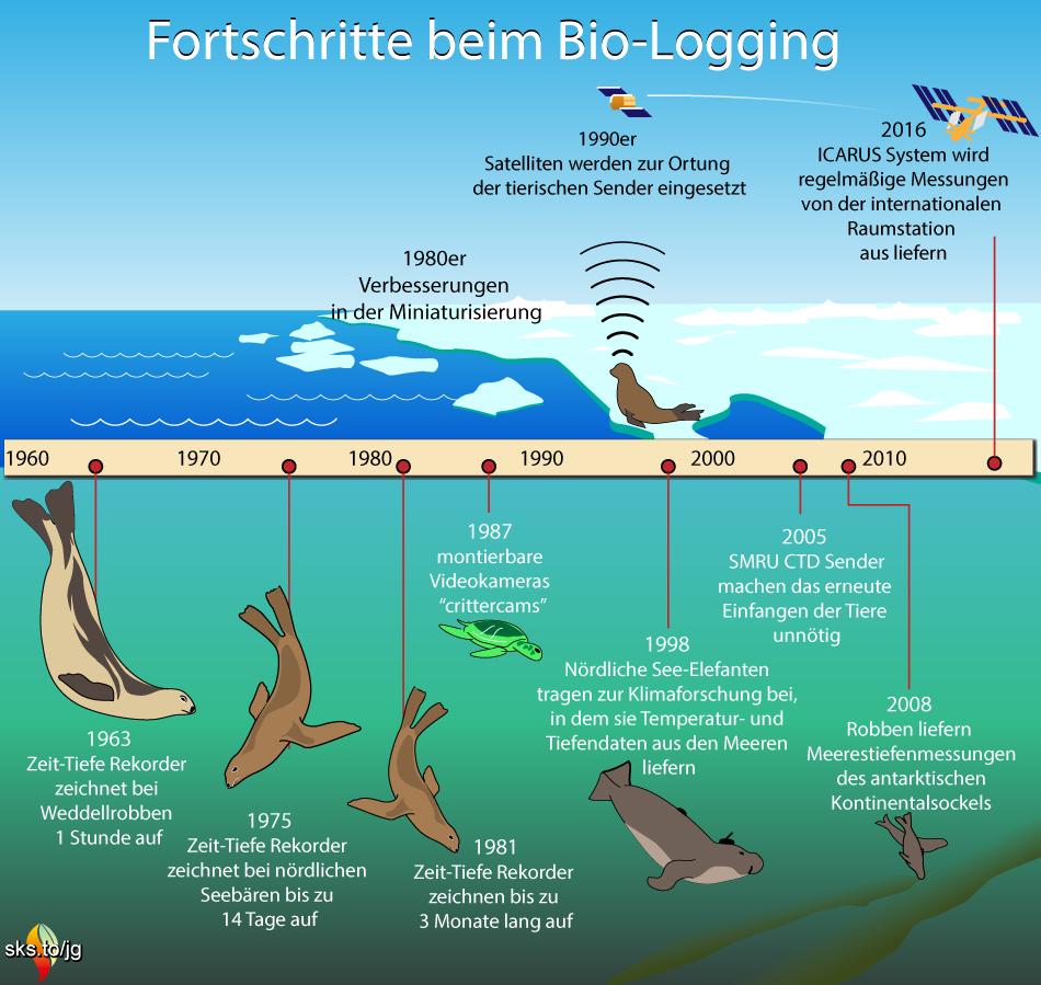 timelineBioLogging jg